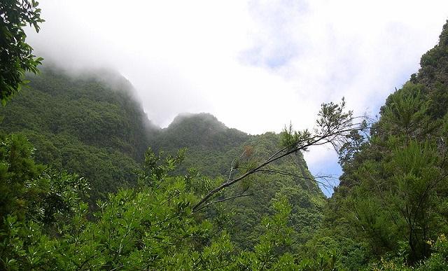 Destino las islas canarias qu hacer con ni os - Islas canarias con ninos ...